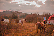 Grayson highlands Shenandoah