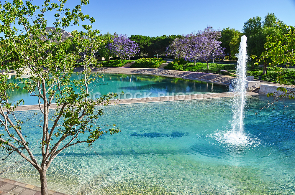 Peace Lake and Fountain at Soka University Aliso Viejo Campus