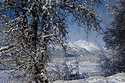 The sun envelopes the Chilkat River valley following a snowstorm in the Alaska Chilkat Bald Eagle Preserve near Haines, Alaska. One of the largest gatherings of bald eagles in the world occurs in November along the Chilkat River. In 1982, the 48,000 acre area was designated as the Alaska Chilkat Bald Eagle Preserve. In the background is Four Winds Mountain. Mountains in the Haines area are a popular destination for heli-skiing.