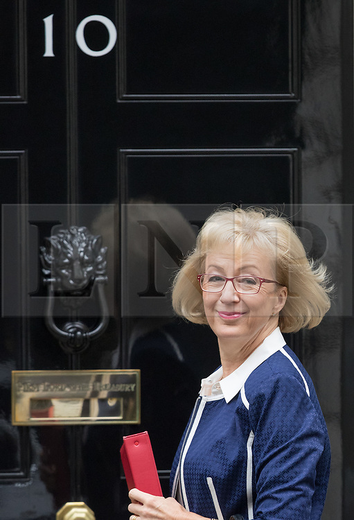 © Licensed to London News Pictures. 10/10/2017. Leader of the House of Commons Andrea Leadsom attends the weekly cabinet meeting in Downing Street. London, UK. Photo credit: Peter Macdiarmid/LNP