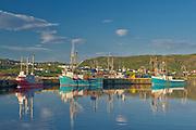 Fishing boats in La Scie Harbour off the Atlantic Ocean. Baie Verte Peninsula.<br />La Scie<br />Newfoundland & Labrador<br />Canada