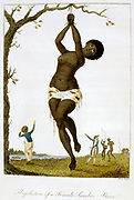 Whipping of a female black slave. From Stedman 'Journal of Five Years Expedition against the Rebelling Blacks of Surinam 1772-77' London 1793. Hand-coloured engraving.