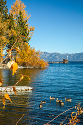 """Lake Tahoe in Autumn 3"" - Photograph of fall foliage at Lake Tahoe in Tahoe City, California."