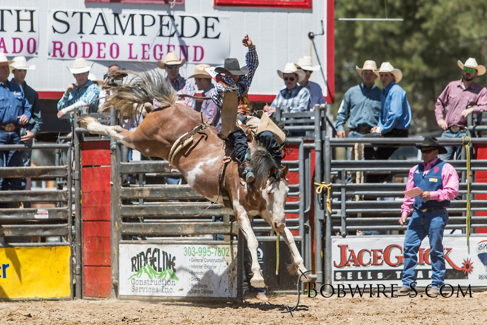 Dylan Sandvik rides Summit Pro Rodeo's 583 Cochise in the bareback riding during the first performance at the Elizabeth Stampede on Saturday, June 2, 2018.