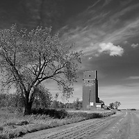 rural road with derelict building in Pembina County USA