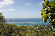Photo shows the view of the landing beaches from the jungle that Sakae Oba and his men occupied for 16 months after Saipan was taken over by US forces in Saipan on 22 February 2011. .Photographer: Robert Gilhooly