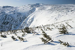 A winter view across Tuckerman Ravine from Lion Head on Mount Washington in New Hampshire USA