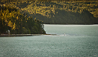 Hazel Point on the Toandos Peninsula (part of the Olympic Peninsula) in Hood Canal of Puget Sound with a few remote vacation homes.