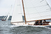 Bagatelle sailing in the Museum of Yachting Classic Yacht Regatta.