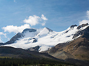 View of the snowfield just to the south of Athabasca Glacer along the Icefields Parkway, Jasper National Park, Alberta, Canada, on a gorgeous day.