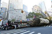 The 94-foot Rockefeller Center Christmas Tree, from Oneonta, NY, pulls into Rockefeller Plaza, Saturday, Nov. 12, 2016, in New York.  The 84th Rockefeller Center Christmas Tree Lighting ceremony will take place on Wednesday, Nov. 30. (Photo by Diane Bondareff/AP Images for Tishman Speyer)