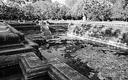 B.1.27 Twin Ponds at Abayagiriya. Anuradhapura.