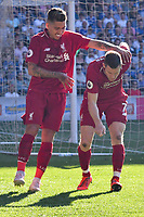 Football - 2018 / 2019 Premier League - Cardiff City v Liverpool<br /> <br /> James Milner of Liverpool celebrates scoring his team's second goal  at Cardiff City Stadium.<br /> <br /> COLORSPORT/WINSTON BYNORTH