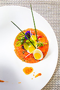 Salmon and white fish tartare  -- photographed for Chef Alan Hughes' seafood cookbook