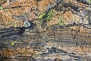 Rock pattern at Sky Pond in Rocky Mountain National Park, Colorado, USA.