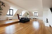 Interior, beautiful loft, hardwood floor, living room