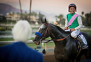 ARCADIA, CA - NOVEMBER 05: Arrogate #10, ridden by Mike Smith, wins the Breeders' Cup Classic during day two of the 2016 Breeders' Cup World Championships at Santa Anita Park on November 5, 2016 in Arcadia, California. (Photo by Alex Evers/Eclipse Sportswire/Breeders Cup)