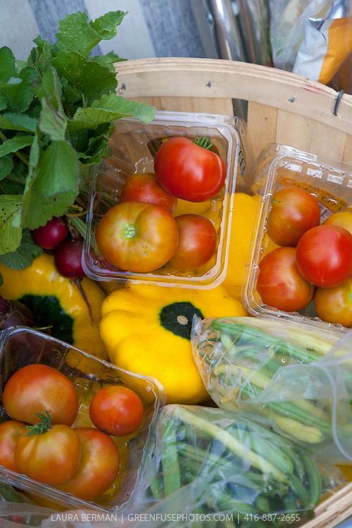 Freshly harvested organic tomatoes, patty pan squash, beets and yellow and green beans from the Sunshine Organic market garden.