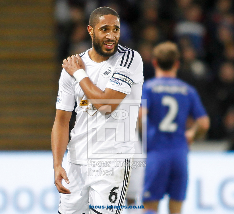Ashley Williams of Swansea City holds his shoulder during the Barclays Premier League match at the Liberty Stadium, Swansea<br /> Picture by Mike Griffiths/Focus Images Ltd +44 7766 223933<br /> 17/01/2015