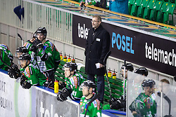 03.11.2013, Hala Tivoli, Ljubljana, SLO, EBEL, HDD Telemach Olimpija Ljubljana vs HC Orli Znojmo, 30th Game Day, in picture Ivo Jan, head coach of HDD Telemach Olimpija, during the Erste Bank Icehockey League 30th Game Day match between HDD Telemach Olimpija Ljubljana and HC Orli Znojmo at the Hala Tivoli, Ljubljana, Slovenia on 2013/11/03. (Photo By Matic Klansek Velej / Sportida)