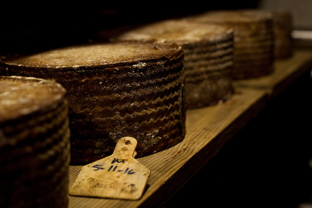 WESTBY, WI — DECEMBER 9: Wheels of Wischego age in an underground climate-controlled room at Hidden Springs Creamery. These cheeses are kept in cool, damp concrete enclosures to precisely control the aging process.