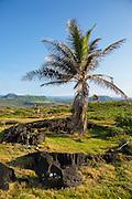 Offering, Kawa Bay, Kau, The Big Island of Hawaii
