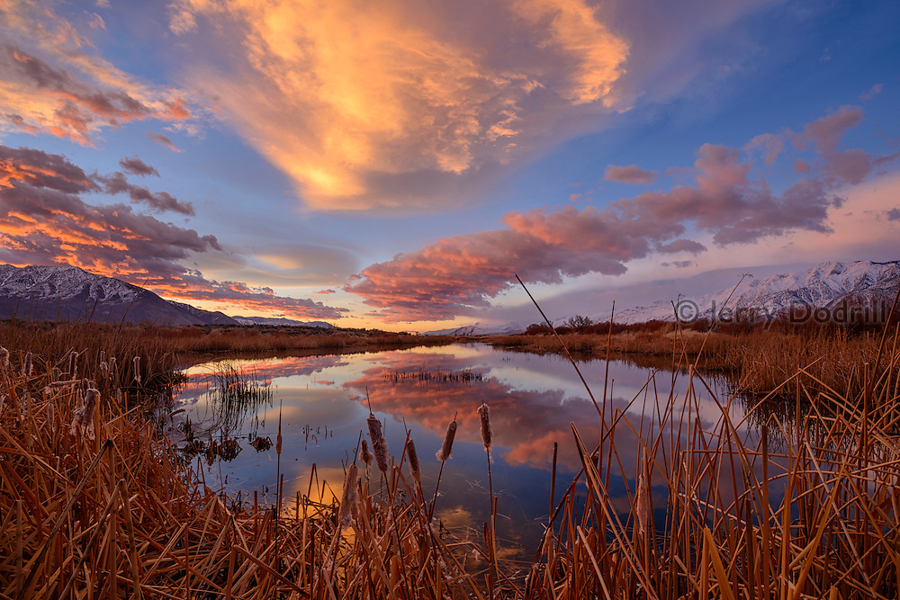 Clouds gather at sunrise over the Owens Valley at Buckley Ponds, outside Bishop, California.