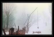 Fogs of Winter, Transylvania<br /> <br /> Digital Print 24x36&quot;