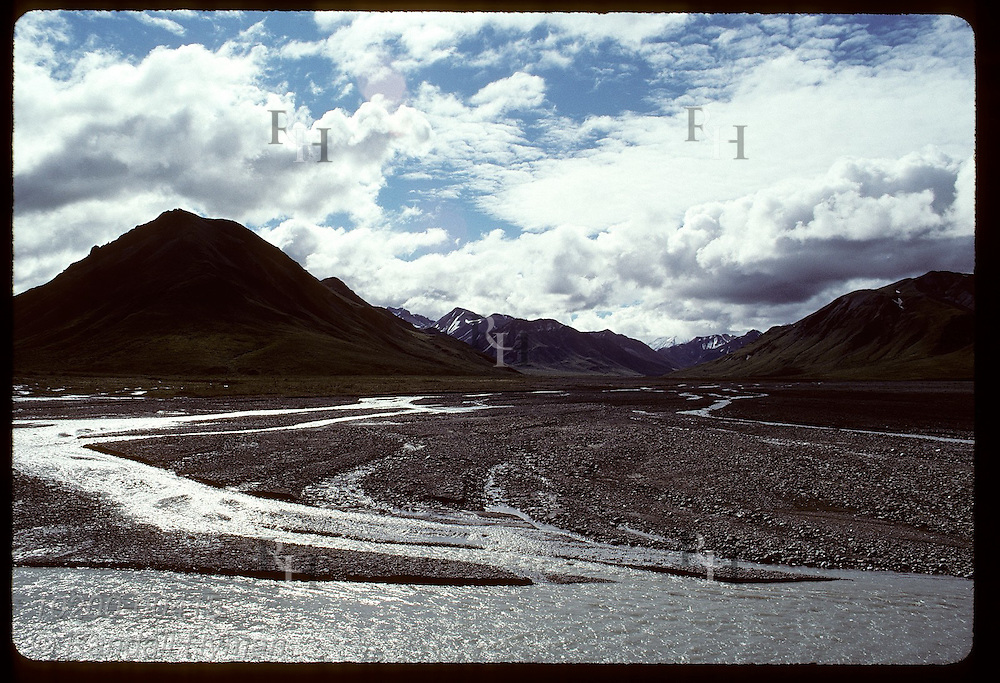 Toklat's East Fork shows classic braiding as channels meander across wide gravel bed; Denali National Park, Alaska