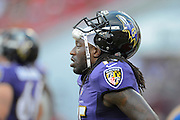 Baltimore Ravens wide receiver LaQuan Williams (15) during a preseason NFL game at Raymond James Stadium on Aug. 8, 2013 in Tampa, Florida. <br /> <br /> &copy;2013 Scott A. Miller