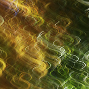 &quot;Pure Elation&quot; <br />