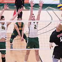 1st year outside hitter P.J. Seekings (2) of the Regina Cougars in action during men's Volleyball home game on January 21 at Centre for Kinesiology, Health and Sport. Credit: Arthur Ward/Arthur Images