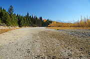 A channel of the North Fork Flathead River dried up in fall after historically low snow pack, spring drought and record setting summer tempatures in 2015. Glacier National Park, northwest Montana.