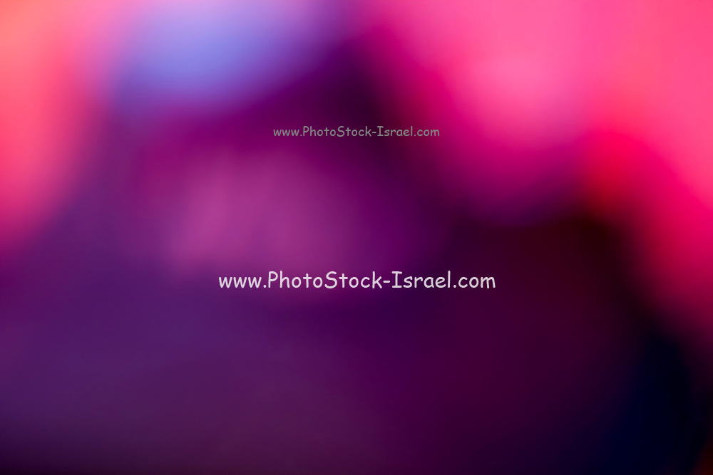 Abstract brilliant colorful abstract in purple