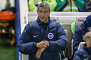 Brighton & Hove Albion manager Chris Hughton during the EFL Sky Bet Championship match between Brighton and Hove Albion and Ipswich Town at the American Express Community Stadium, Brighton and Hove, England on 14 February 2017. Photo by Shane Healey.