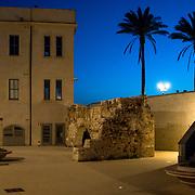 Alghero days & nights