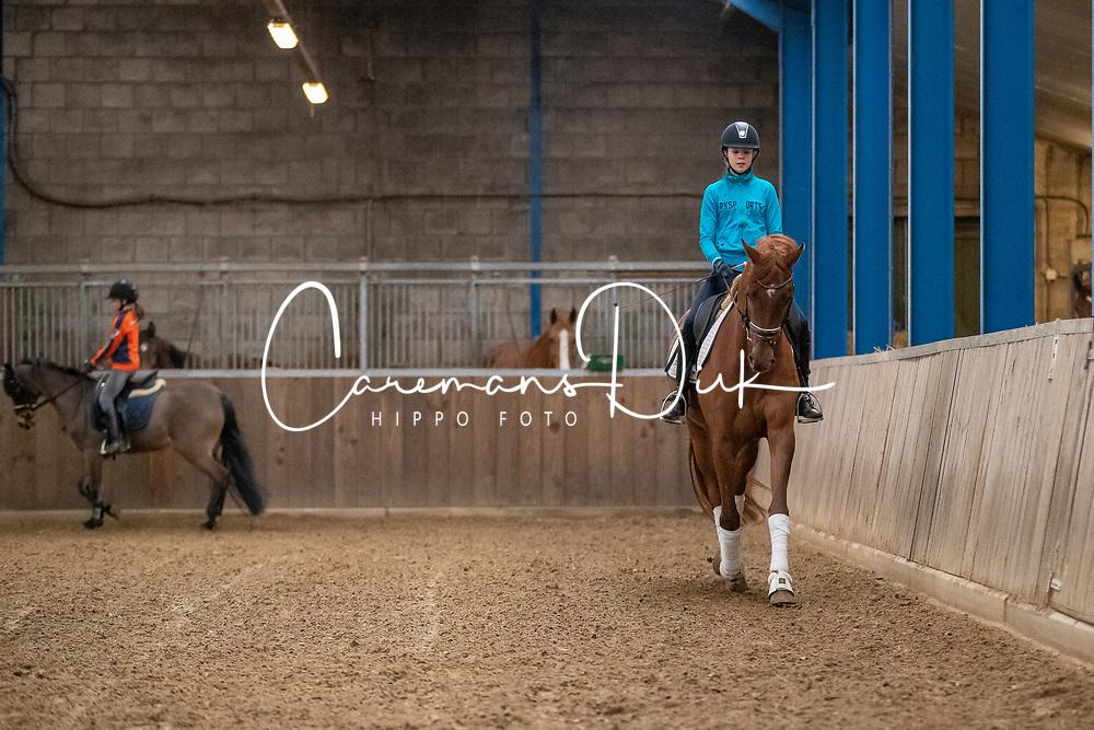Van Erp Lynne, Lafanory<br /> Dressuurstal Van Erp - Heesch 2020<br /> © Hippo Foto - Dirk Caremans<br /> 21/02/2020