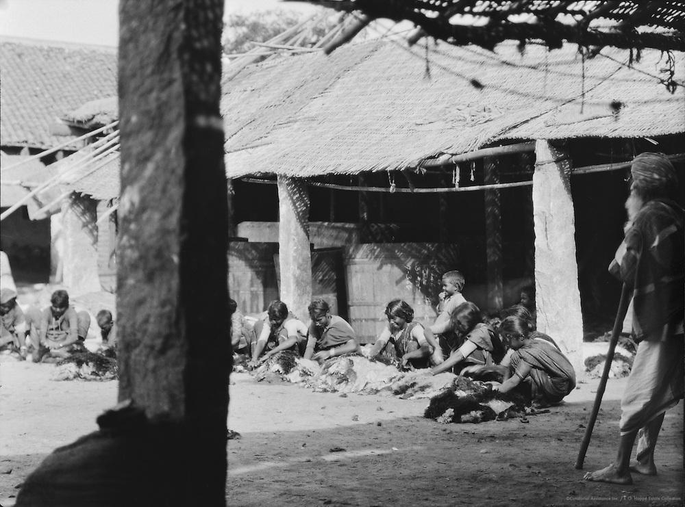 Tannery at Guntakal, India, 1929