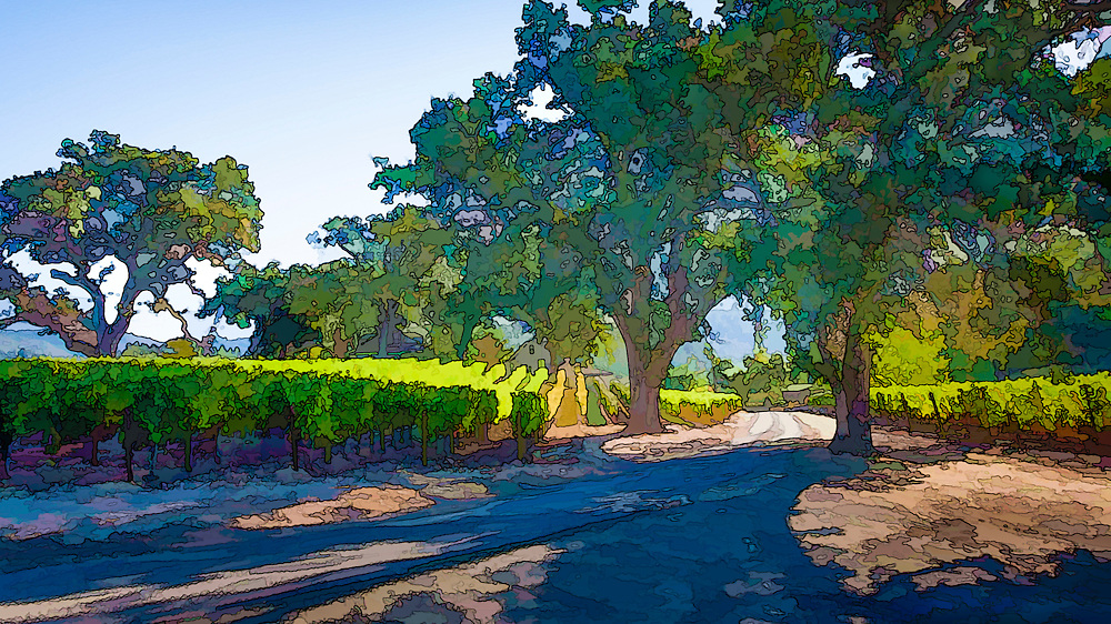 Vineyard photographic artworks and wall decor from California's wine country