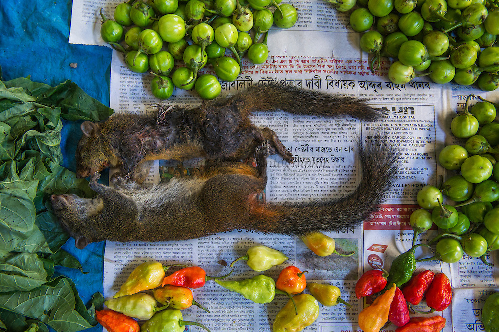Squirrels sold in market for food<br /> Apatani Tribe<br /> Ziro Valley, Lower Subansiri District, Arunachal Pradesh<br /> North East India