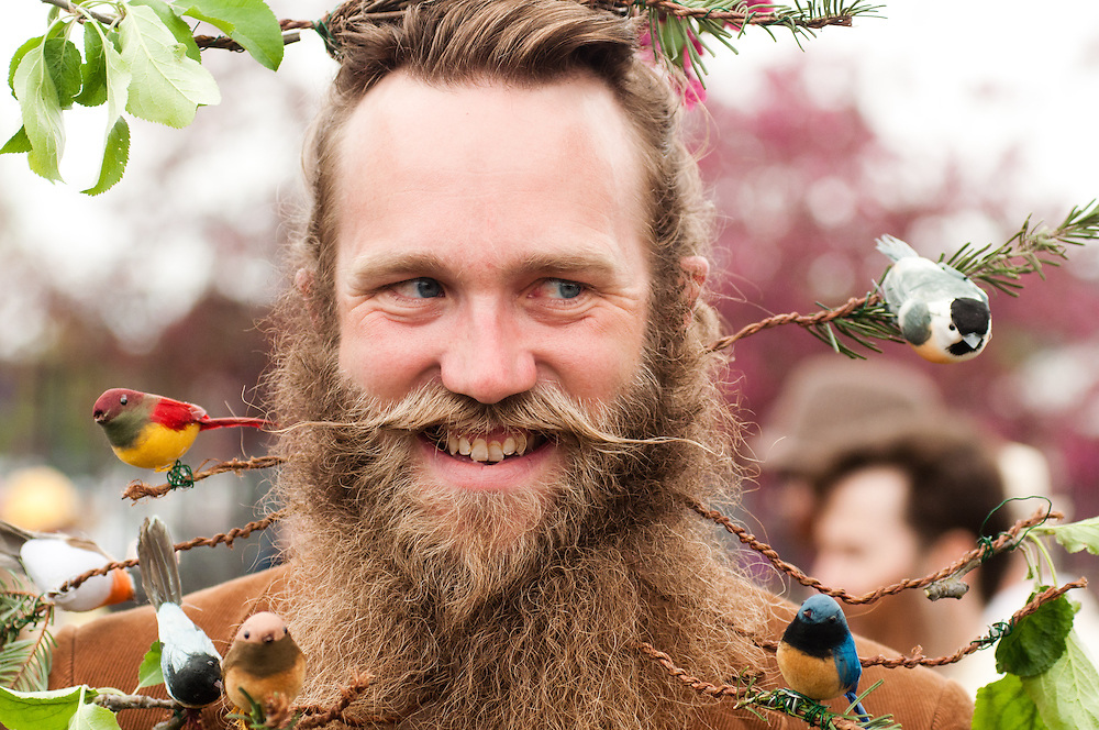 "Charles Earnshaw of Anchorage, Alaska displays ""Beards of a Feather"" in Bend, Oregon on Saturday, June 5, 2010 at the Beard Team USA National Beard and Mustache Championships. Earnshaw took third place in the freestyle portion of the competition."
