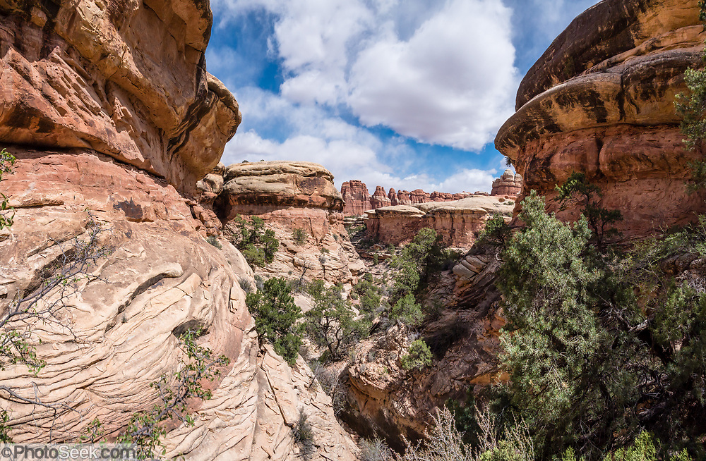 Hike from Chesler Park to Druid Arch, in Needles District of Canyonlands NP, Monticello, Utah, USA. This image was stitched from multiple overlapping photos.