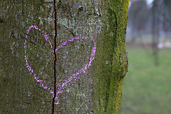Dec. 05, 2012 - Broken heart drawn on a tree trunk (Credit Image: © Image Source/ZUMAPRESS.com)