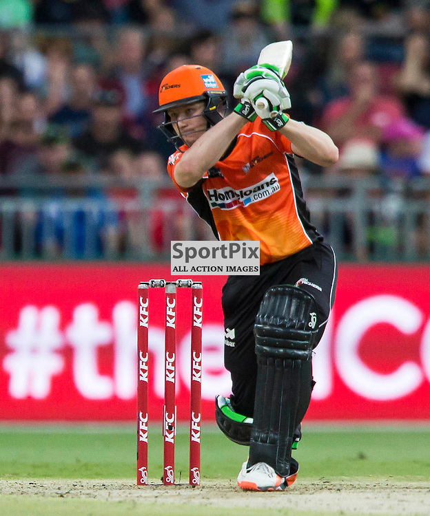 KFC Big Bash League T20 2015-16 , Sydney Thunder v Perth Scorchers, Spotless Stadium; 7 January 2016<br /> Perth Scorchers Cameron Bancroft