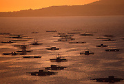SPAIN, NORTH COAST, GALICIA mollusk fishing platforms in the Ria de Arosa at San Vicente de Grove, west of Pontevedra