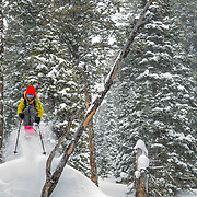Lynsey Dyer drops a tuck air in untracked powder during a major winter storm in the Tetons.