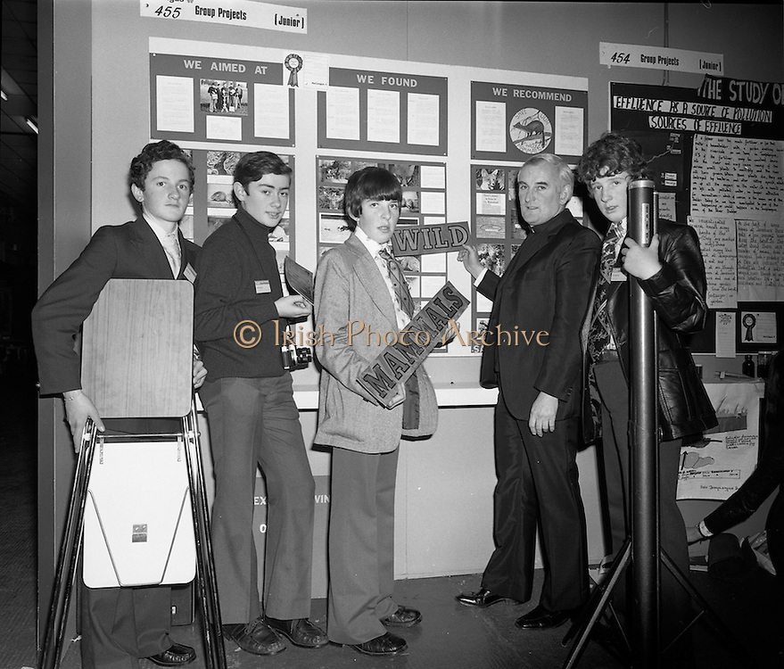 07/01/1977.01/07/1977.7th January 1977.The Aer Lingus Young Scientist Exhibition at the RDS Dublin. ..Picture shows members of the Carmelite College, Castlemartyr, Co. Cork preparing their exhibit 'Irish Mammals- a scientific study of their habits and distribution' from left Joseph Egan, Sean Doolan, Robin Morrissey, Fr. Herman O.D.C. and Vincent Downes, all from the Carmelites College.  ..