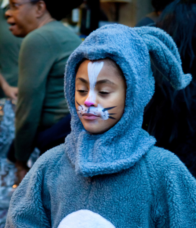 Cat Face. Taken at the Halloween Day Parade in Park Slope, Brooklyn.