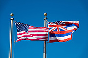 Flags of the state of Hawaii and the United States of America fly over the Big Island. Hawaii's state flag (1959-present) was also previously used by the 1810 kingdom, 1893 protectorate, 1894 republic, and 1898 territory of Hawaii. The flag was designed at the request of King Kamehameha I and has eight stripes of white, red and blue that represent the eight main islands. The flag of Great Britain is emblazoned in the upper left corner to honor Hawaii's friendship with the British. It is the only US state flag to feature the flag of a foreign country: the Union Jack, or Union Flag of the United Kingdom. These flags were photographed at Pu'ukohola Heiau National Historic Site.