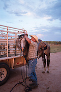 Woodward, OK - Justin Howard puts the bridle on his horse early in the morning before a cattle roundup.